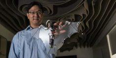 طراحی ربات خفاش مانند در کالتک با بالهای کشسان